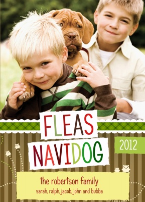 Personalized Holiday Cards, Holiday Puppy Love Design