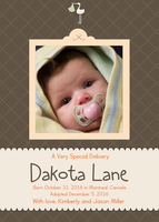 Photo Adoption Announcements - Special Stork Song