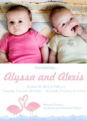 Twin Birth Announcements, Double Pink Flamingos Design