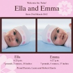 Double Daisy Bouquet - Twin Birth Announcement Cards
