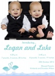 Double Blue Flamingos - Twin Birth Announcement Cards
