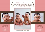 Pink French Windows -  Twin Birth Announcements