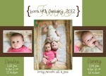Green French Windows - Twin Birth Announcement Cards
