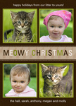 Best Friends Holiday - Dog Christmas Cards