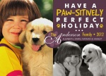 Purple Paws - Dog Christmas Cards 