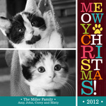 Bright Paw Prints -  Cat Christmas Cards