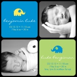 Twin Trunks Blue - Twin Birth Announcement Cards