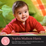 Special Pink Blanket -  Adoption Announcement Cards