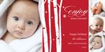 Holiday Moments -  Babys First Christmas Cards