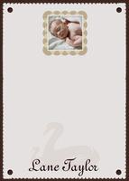 Baby's Memory Book