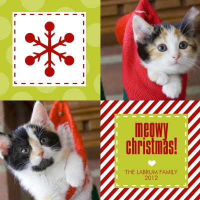 Personalized Holiday Cards, Christmas Cuties Design