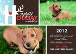 Holiday Paws - Dog Christmas Cards 