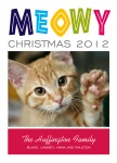 Multi Meowy -  Cat Christmas Cards 