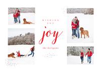 Joyful Snow