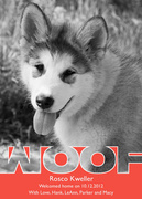 Woof - New Puppy Announcements -  Pet Photo Cards