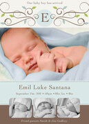 Baby Boy Announcements - Emil Luke