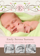 Emily Serena - Baby Girl Announcements