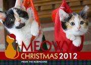 Cat's Meow-Dog Christmas Cards