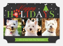 Holiday Pup  - Dog Christmas Cards